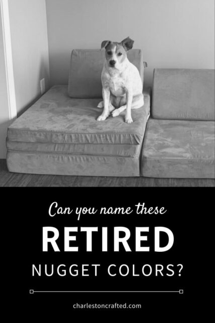 Retired Nugget Comfort colors - Celebrating with kids